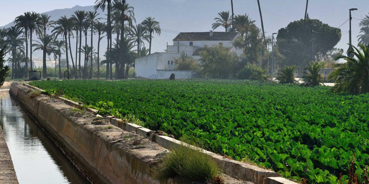 El gran sistema circulatorio de la huerta de Murcia